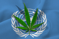 Regulating Cannabis in Accord with International Law: Options to Explore