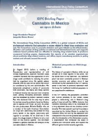 cannabis-mexico