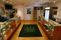 marijuana-dispensary