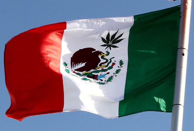 mexico-flag-cannabis