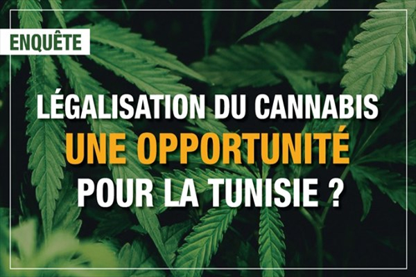 tunisia cannabis legalisation