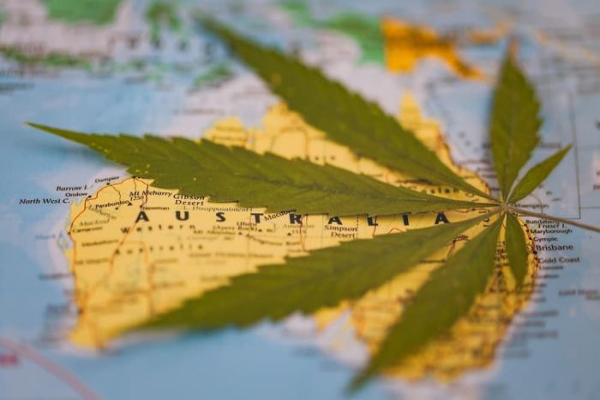 australia cannabis map2