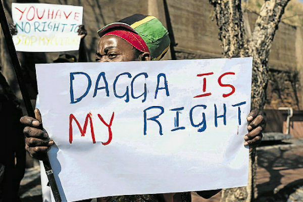 sa dagga is my right